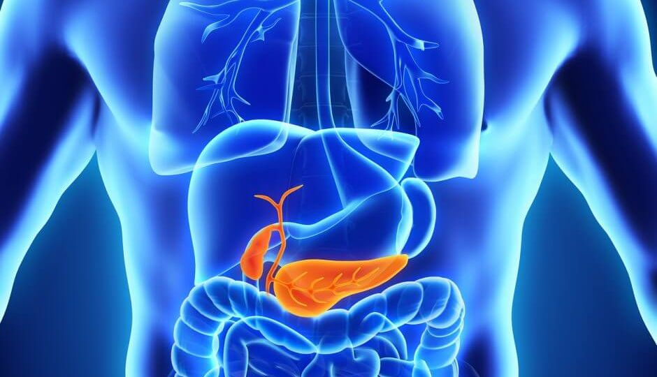 bigstock-Human-Gallbladder-and-Pancreas-83816423-940x554